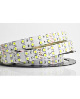 Светодиодная лента 5050 LUX LEDx120x2-SQP-W Белый 24В, 28.8Вт IP33