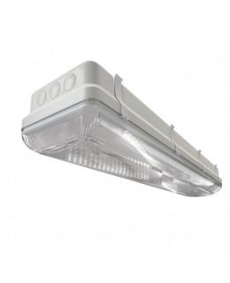 Светильник TL-ЭКО 236/30 PR IP-65