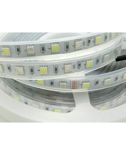 Светодиодная лента 5050 LUX LEDx30-30x1-SQRII-RGBW RGB+Белый 12В, 14,4Вт IP67